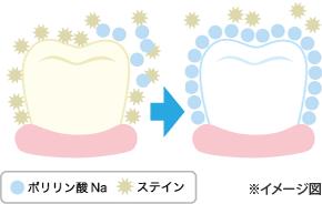 poririn2
